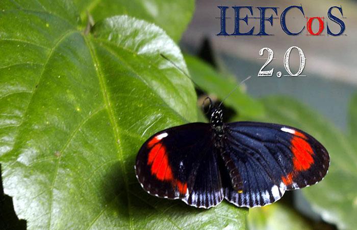 IEFCoS 2.0 -il futuro della scuola di psicoterapia familiare di Roma